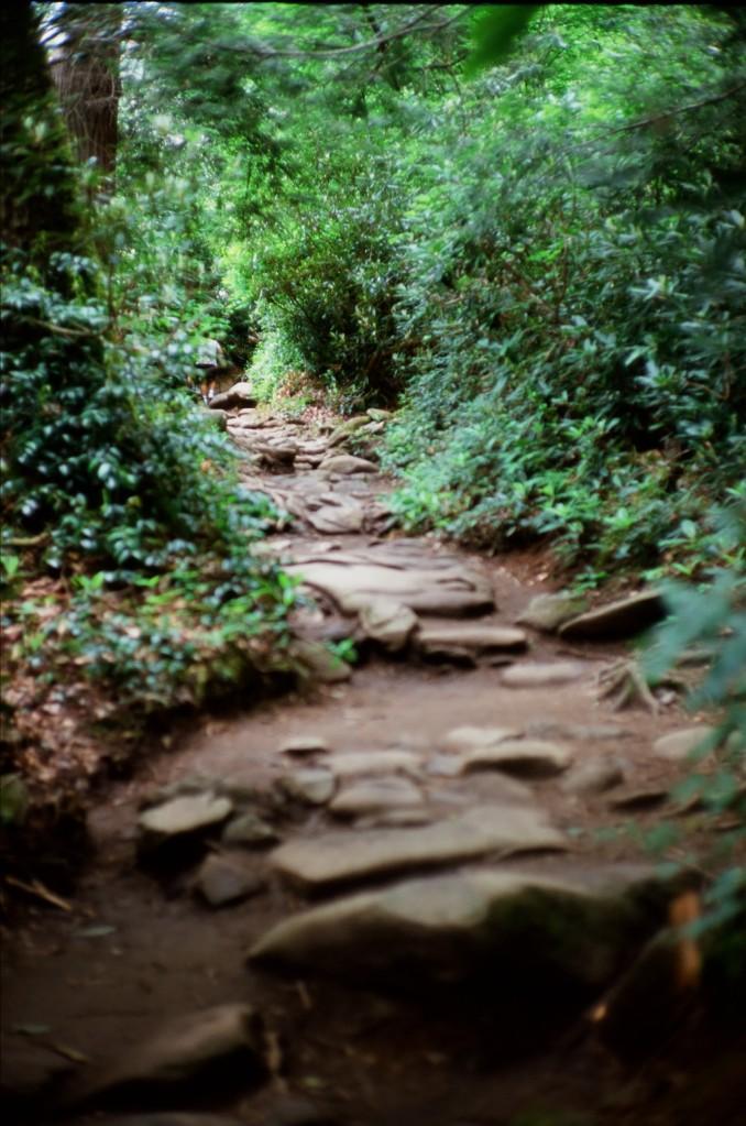 Grotto Fall-bessa r2_velvia
